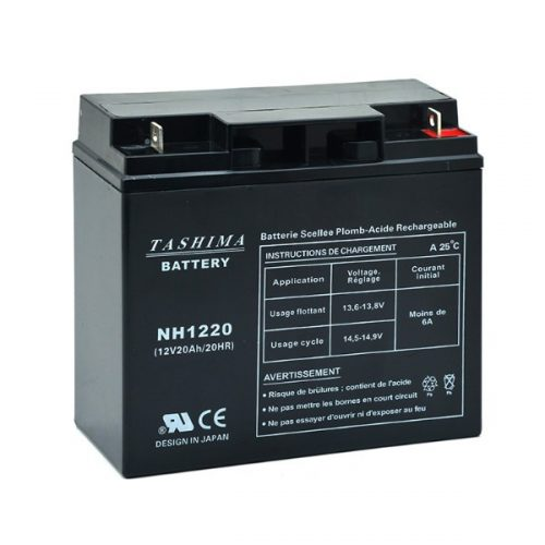 Castelgarden Lawnmower battery NH1220 / NH1218 12V 20Ah - B21075S - MOT8608